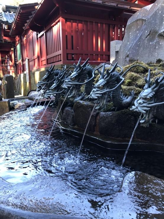 2020年1月6日 箱根神社初詣_b0098584_19043683.jpeg