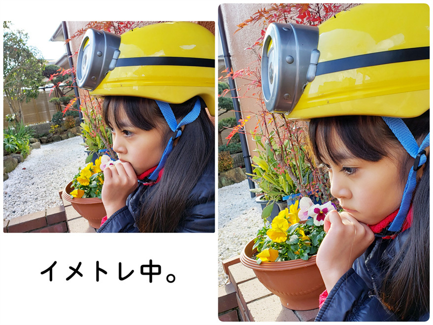 あけましておめでとうございます!(大阪での年末年始♡)_d0224894_17131739.jpg