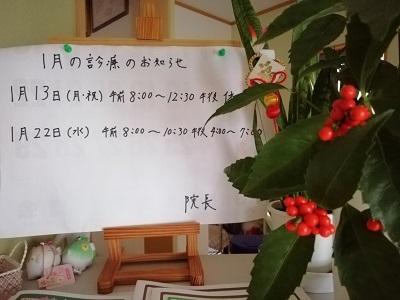 1月の診療予定のお知らせ_b0391199_17170851.jpg