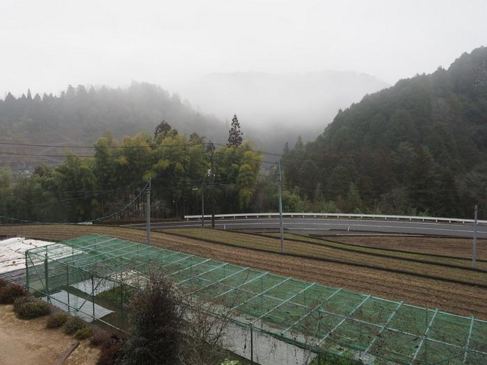小雨のち曇り_c0116915_23224408.jpg