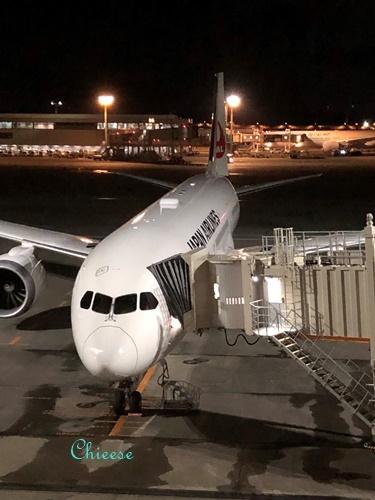 JAL ホノルル便 エコノミークラス 往路 2019_e0158121_11492682.jpg