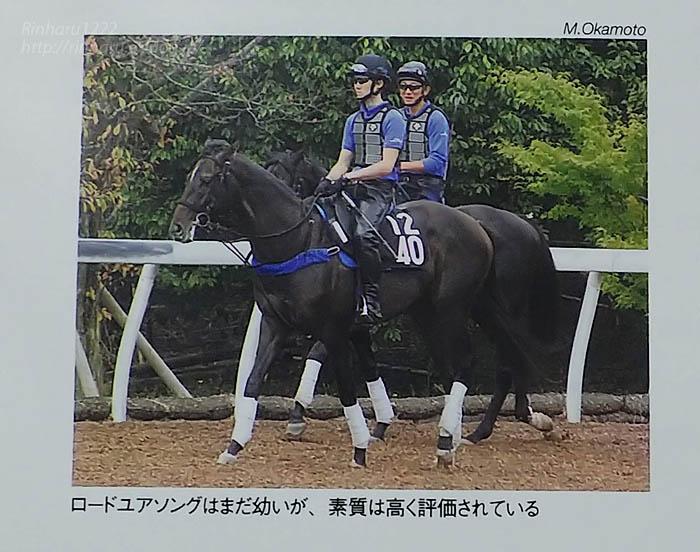 2015年2月号 優駿~ロードユアソング_f0250322_203331.jpg