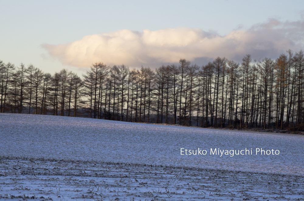 嬉しい雪原_f0152939_03575674.jpg