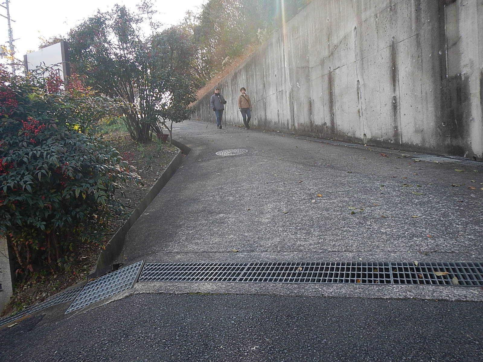 新春サイクリング_a0386742_16282344.jpg