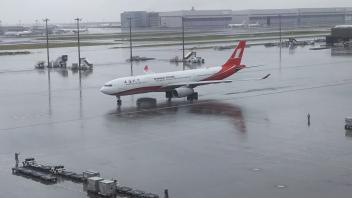 雨の羽田空港_a0394451_13292849.jpg
