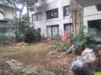 庭掃除など、、、。_a0394451_13304986.jpg