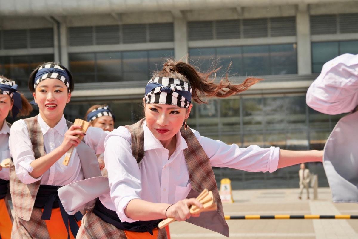 2019京都さくらよさこい2日目ロームシアター京都ステージその4(いちえもん)_a0009554_00133552.jpg