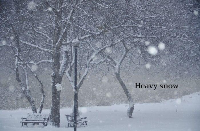 まとまった雪_b0341869_17335653.jpg
