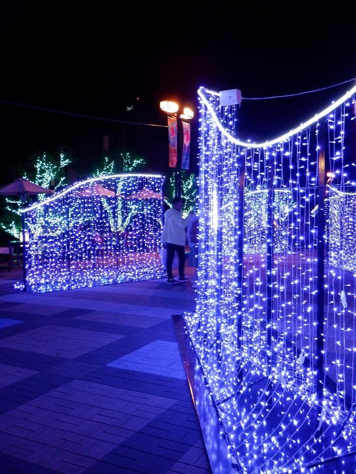 ◆2020海遊館イルミネーションRUN ~ぶらり港区1周~_f0238779_08263414.jpg
