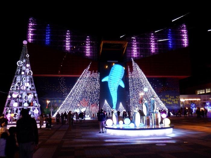◆2020海遊館イルミネーションRUN ~ぶらり港区1周~_f0238779_08265329.jpg