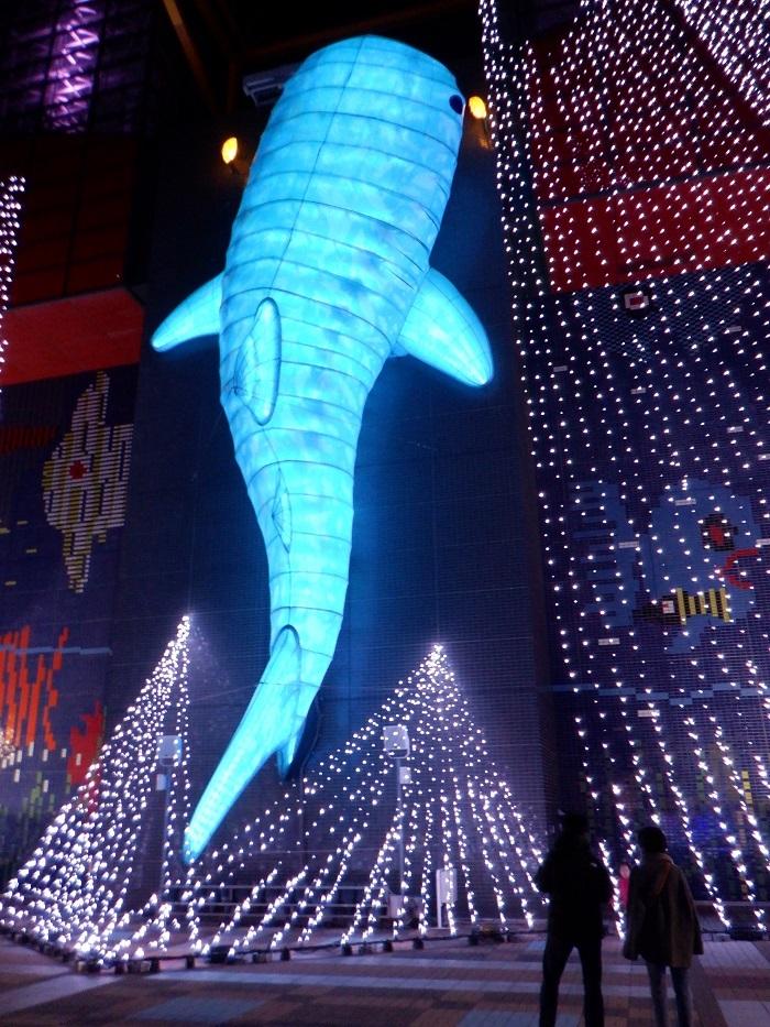 ◆2020海遊館イルミネーションRUN ~ぶらり港区1周~_f0238779_08274645.jpg