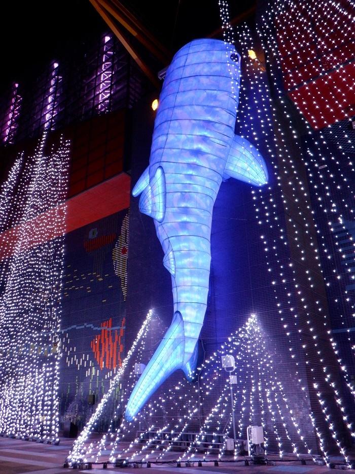 ◆2020海遊館イルミネーションRUN ~ぶらり港区1周~_f0238779_08275665.jpg