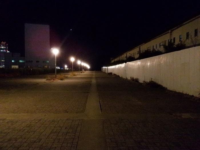 ◆2020海遊館イルミネーションRUN ~ぶらり港区1周~_f0238779_08284433.jpg