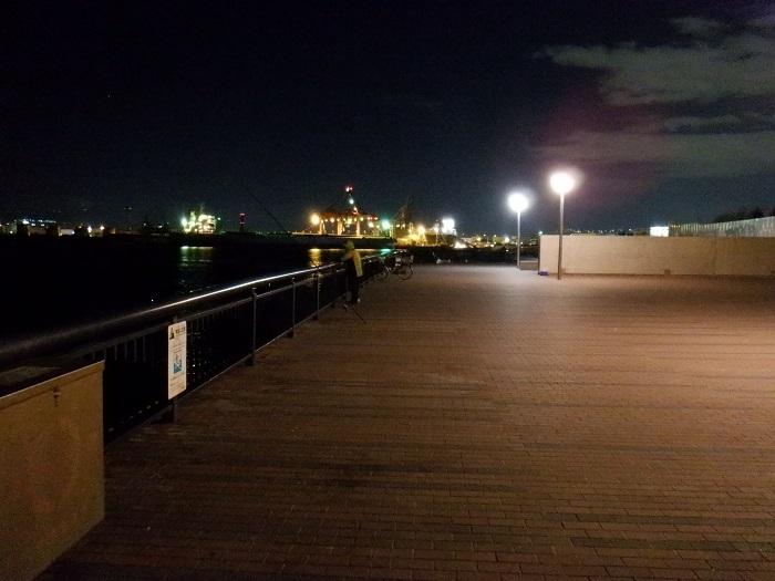 ◆2020海遊館イルミネーションRUN ~ぶらり港区1周~_f0238779_08290478.jpg