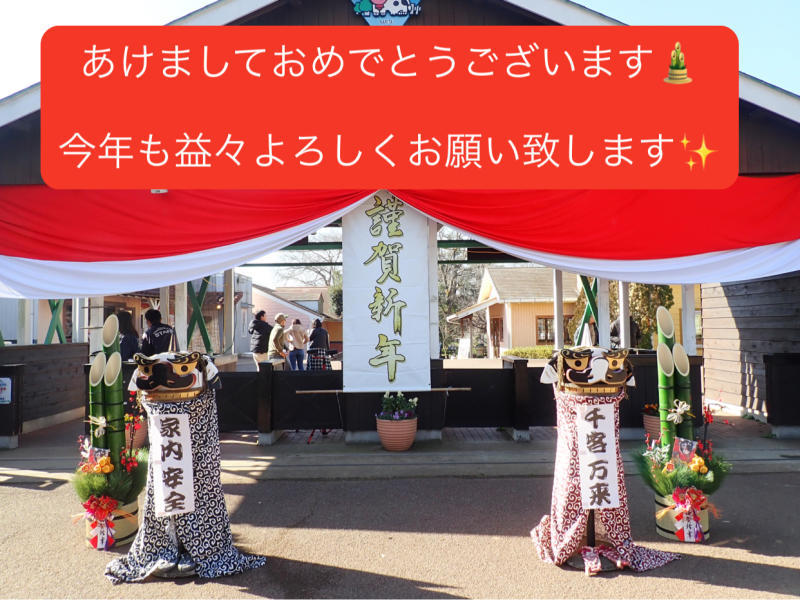 今年もどうぞよろしくお願いいたします☆彡~手作り簡単おせち料理と動物いっぱいのお正月~_e0397681_02573611.jpg
