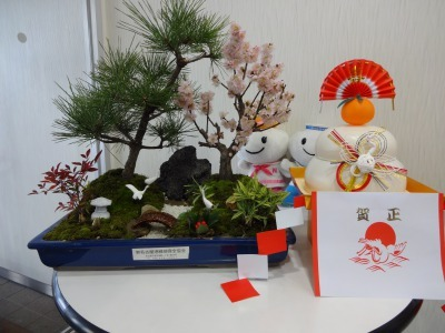 正月用寄せ植え盆栽の展示の様子_d0338682_13222714.jpg