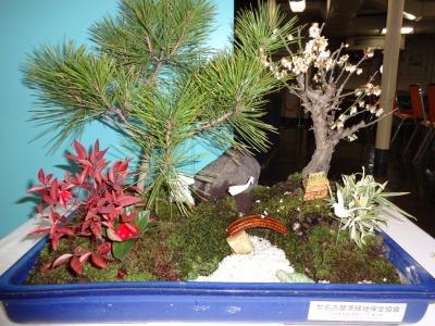 正月用寄せ植え盆栽の展示の様子_d0338682_16583425.jpg