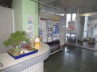 正月用寄せ植え盆栽の展示の様子_d0338682_16593269.jpg