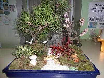 正月用寄せ植え盆栽の展示の様子_d0338682_16594588.jpg
