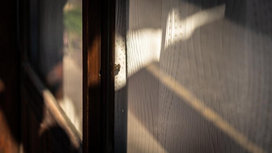 門前町の光蜥蜴_d0353489_22143708.jpg