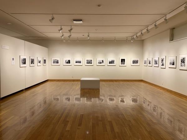 東川町文化ギャラリーで開催中の写真展_b0187229_16452573.jpg