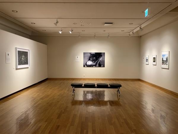 東川町文化ギャラリーで開催中の写真展_b0187229_16452735.jpg