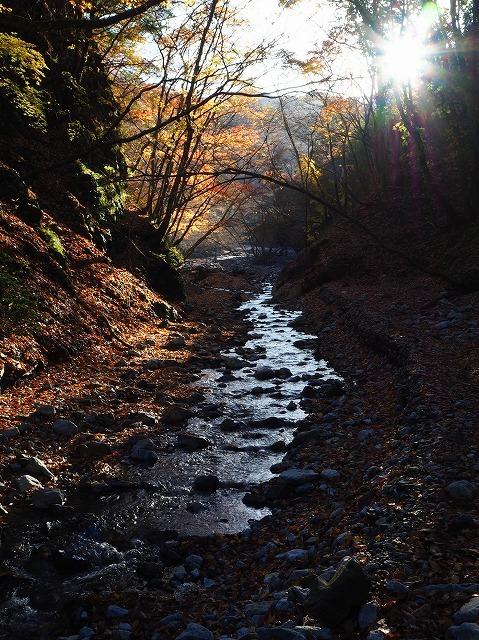 2019/11/21  【鈴鹿】御池 ~ ゴロ谷から薄雪のテーブルそしてアザミ谷 ~_e0403837_23095440.jpg
