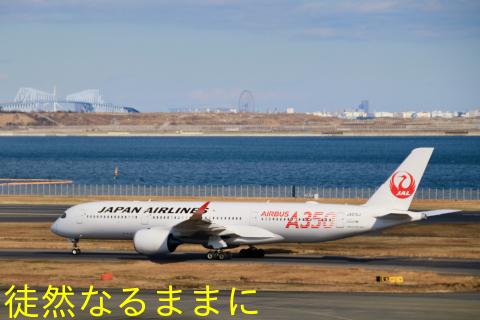 羽田空港_d0285540_06210986.jpeg