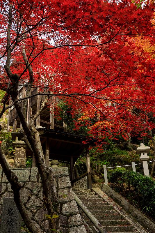 紅葉が彩る滋賀2019 染まる不動寺_f0155048_051656.jpg