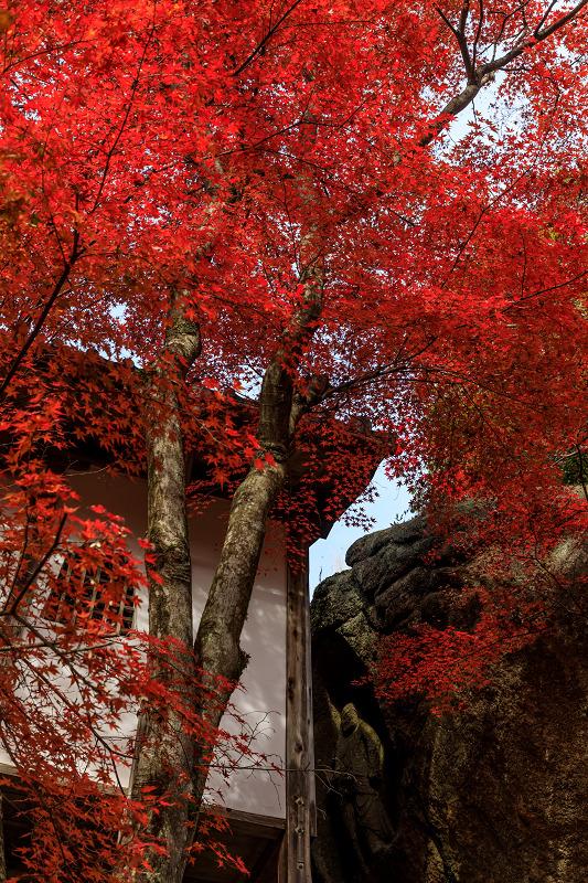 紅葉が彩る滋賀2019 染まる不動寺_f0155048_053647.jpg