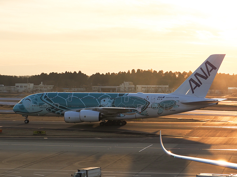 冬の成田空港_a0003650_21374919.jpg