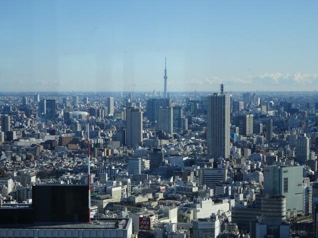 「ハイアットリージェンシー東京」に無料宿泊 (3) 初詣_b0405262_22595696.jpg