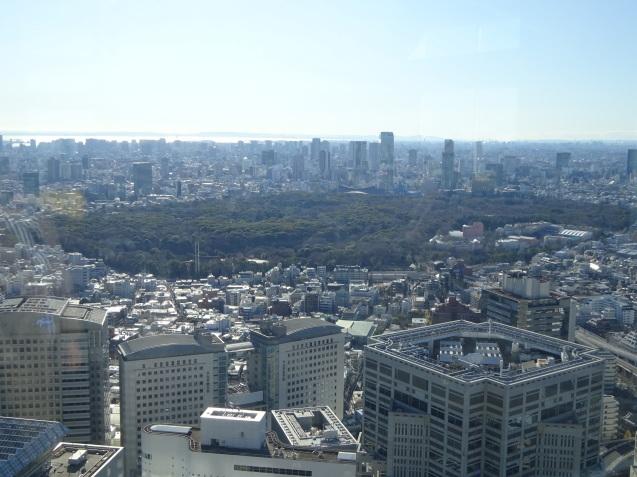 「ハイアットリージェンシー東京」に無料宿泊 (3) 初詣_b0405262_23001129.jpg