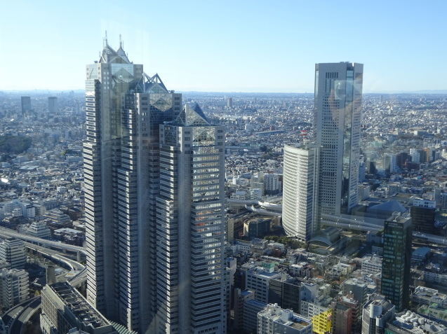 「ハイアットリージェンシー東京」に無料宿泊 (3) 初詣_b0405262_23002977.jpg