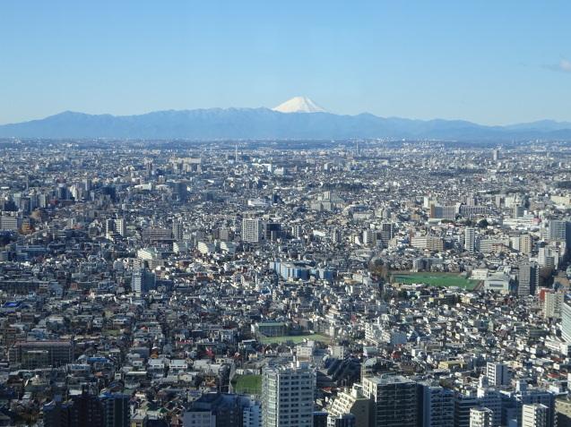 「ハイアットリージェンシー東京」に無料宿泊 (3) 初詣_b0405262_23005095.jpg