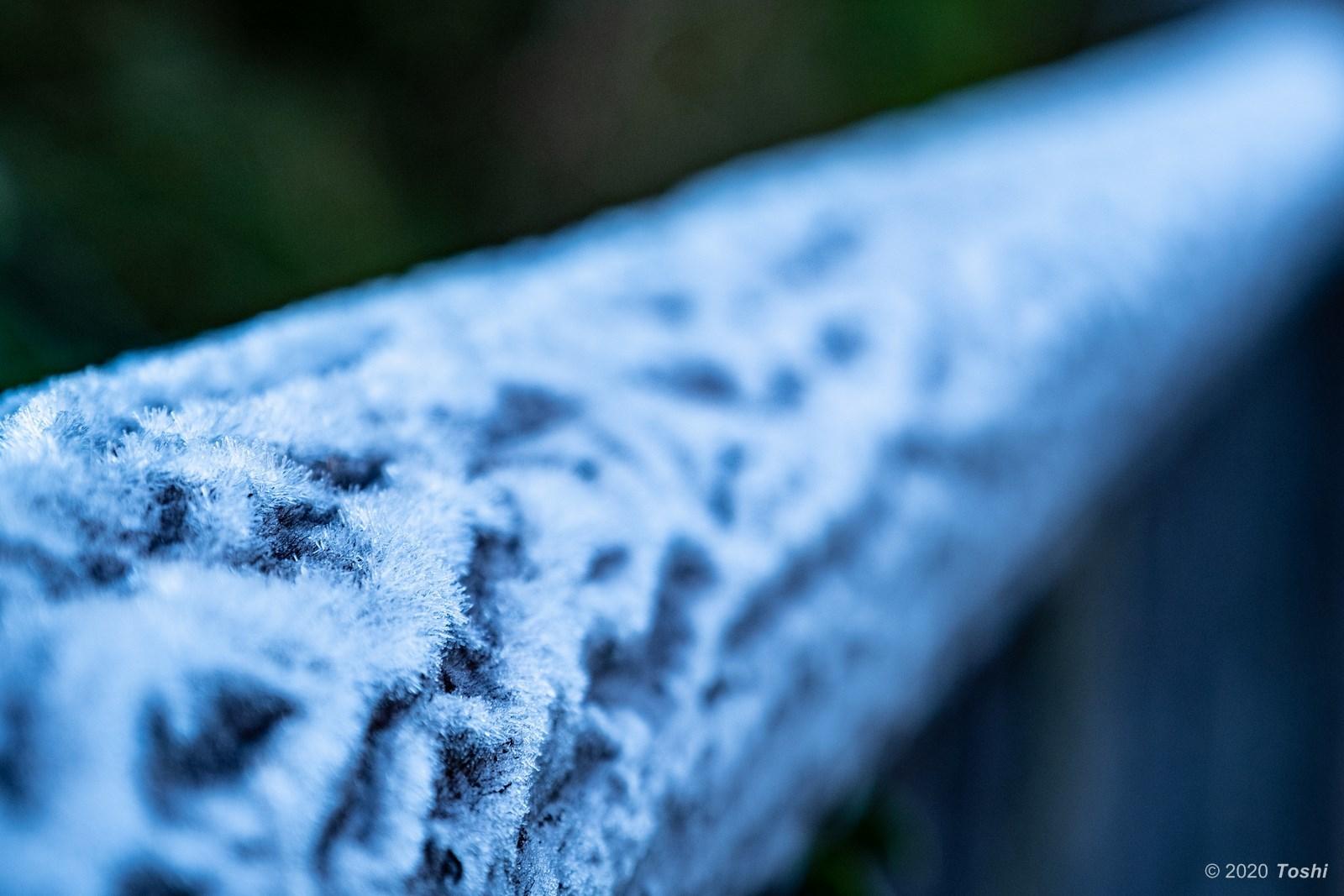 南紀にも霜はある_c0350572_22224907.jpg