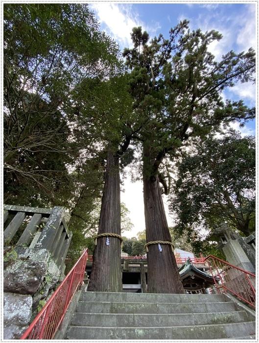 お正月休み最後の1日、別府での初詣は、初めての朝見神社でした\\(>3(O^-)/ウフ☆_b0175688_00445235.jpg