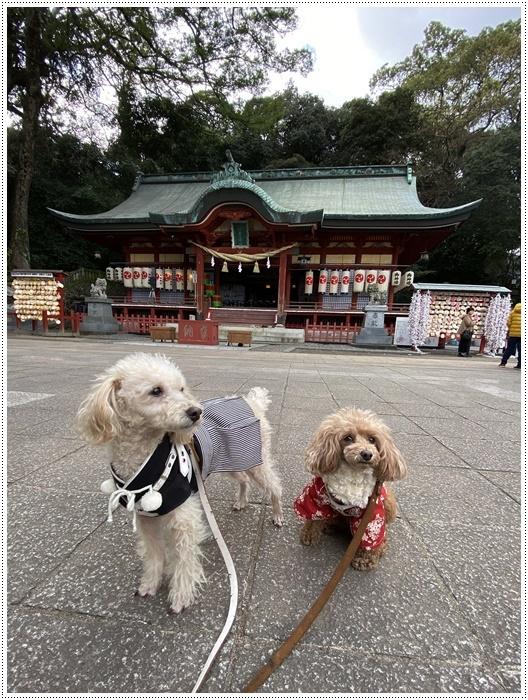 お正月休み最後の1日、別府での初詣は、初めての朝見神社でした\\(>3(O^-)/ウフ☆_b0175688_00475801.jpg