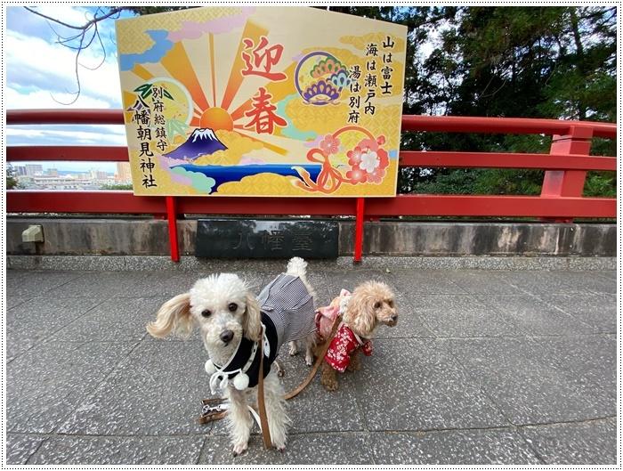 お正月休み最後の1日、別府での初詣は、初めての朝見神社でした\\(>3(O^-)/ウフ☆_b0175688_00481504.jpg
