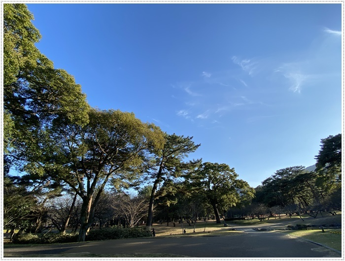 年初めの忙しい水曜日がやってきた~家ごはんもさぼり、さくらと大のブログ写真もない(◞‸◟ㆀ)ショボン_b0175688_19582652.jpg