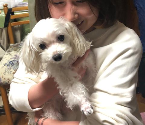 愛犬のお正月_d0233891_09391429.jpg