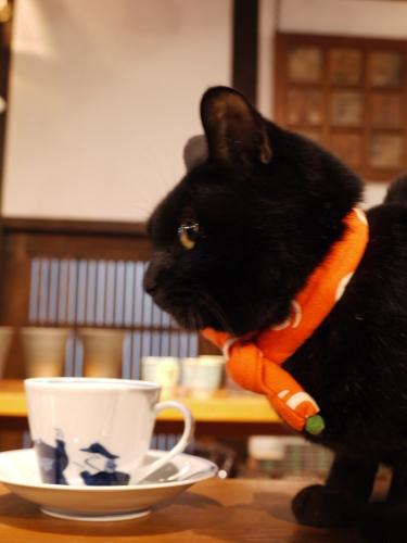 ミロ店長はシャキ~~ン☆_e0167795_12062672.jpg