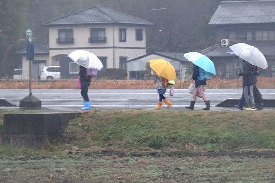 雨で始まる3学期_b0145296_08594182.jpg