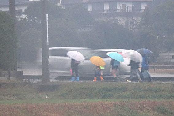 雨で始まる3学期_b0145296_08594390.jpg