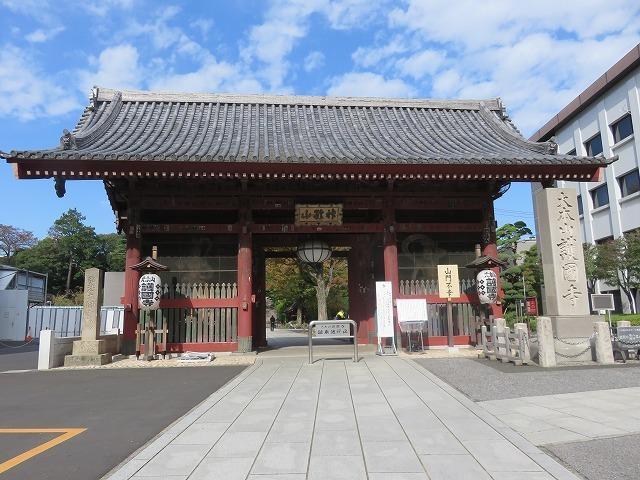 護国寺①(新江戸百景めぐり56-1)_c0187004_18481848.jpg