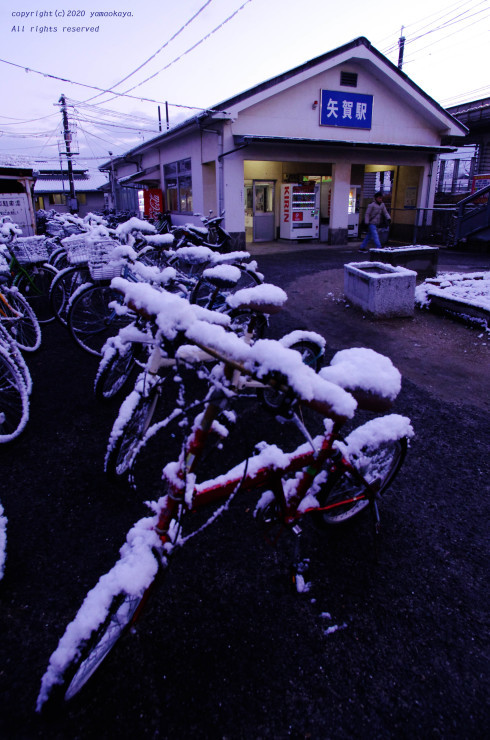 遅い初雪_d0309612_00245462.jpg
