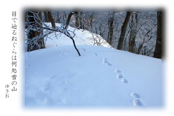 雪景色 その④_b0392813_20262221.jpg