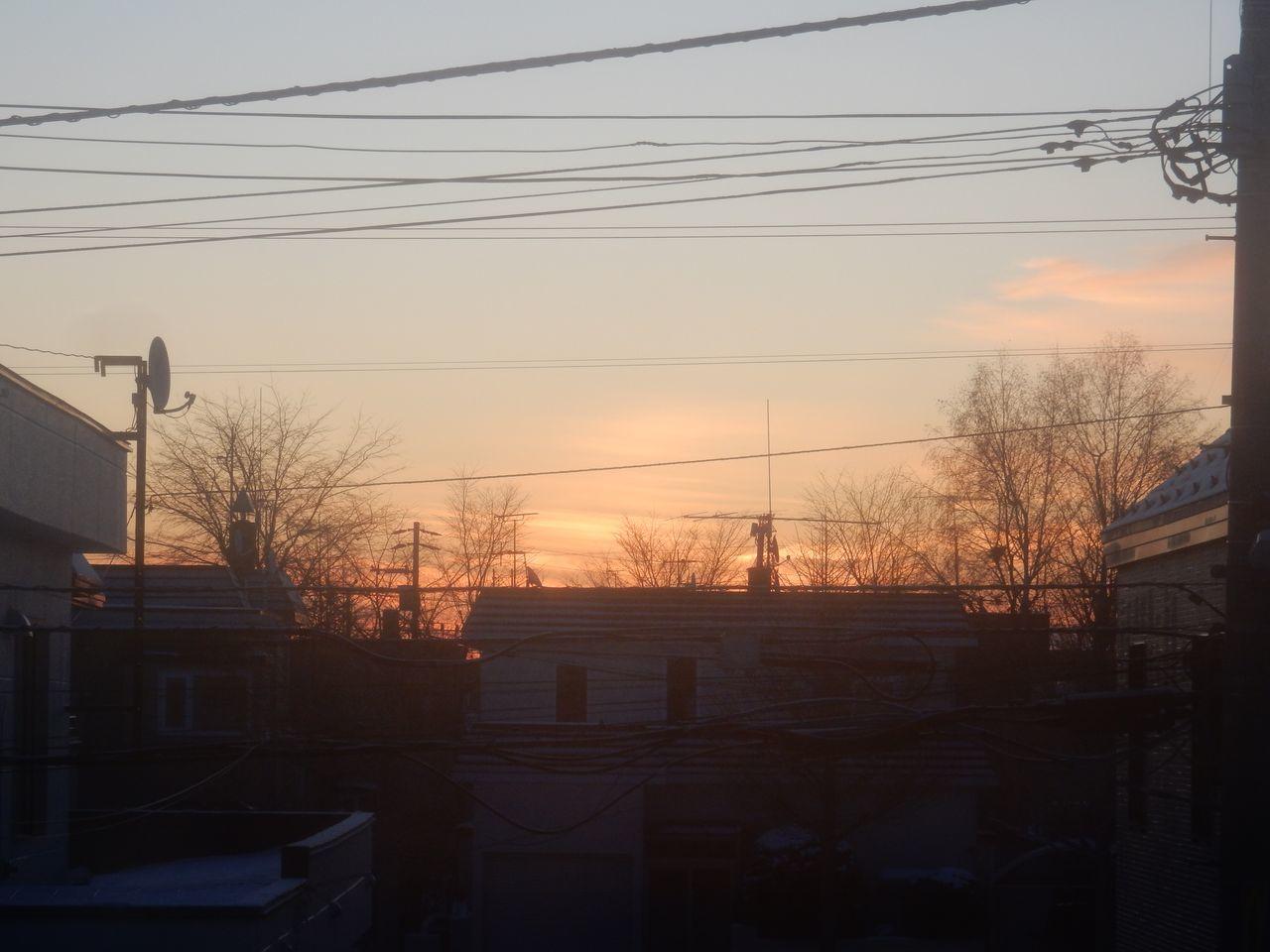 明るい朝_c0025115_21360433.jpg