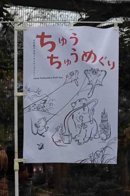 新春!ちゅうちゅうめぐり!!(井の頭自然文化園)【前編】_b0355317_21453242.jpg