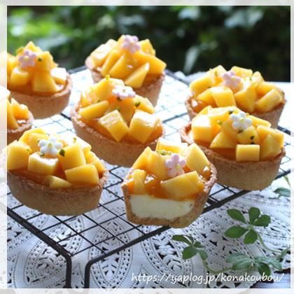 6月のお菓子・マンゴーとチーズ_a0392423_00164272.jpg